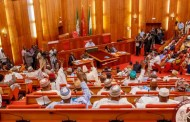 2020 Budget: Senate faults projections