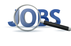 Job Alert! Hiring in UPSC, NHM, PNB; Know How to APPLY