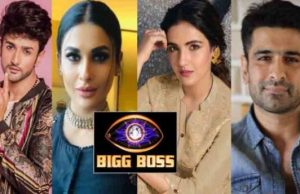 Rubina to Jasmin, Complete List of Contestants From Bigg Boss 14