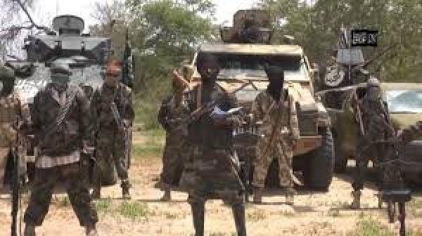 •Boko Haram terrorists