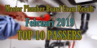 master plumber top 10