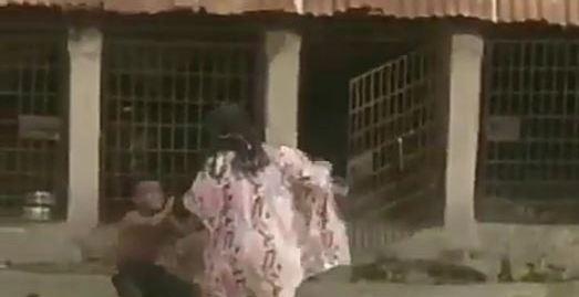 Woman flogs boy locks him in dog kennel