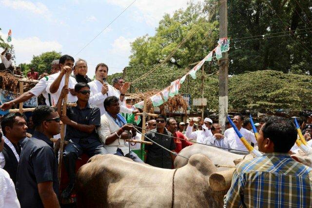 karnatka karnatka assemley assembley election rahul gandhi narendra modi