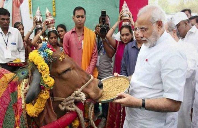 रवांडा के राष्ट्रपति को तोहफे में 200 गाय क्यों देंगे प्रधानमंत्री नरेंद्र मोदी?