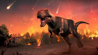 As 5 Grandes Extinções Da Terra, Quando Será a Próxima Extinção?