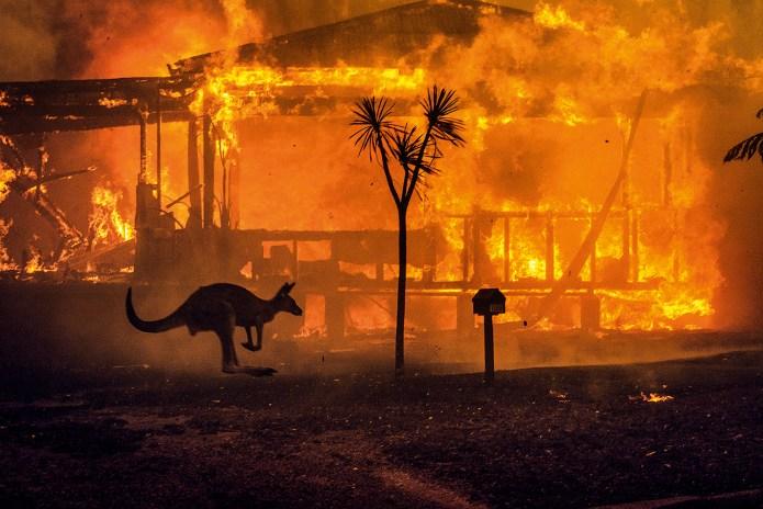 Incêndios na Austrália, Retrospectiva de atos que marcaram o 2020