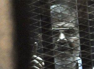 Wpid Morsi