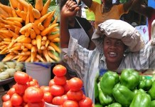 vegetable exports