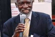 Professor Stephen Adei