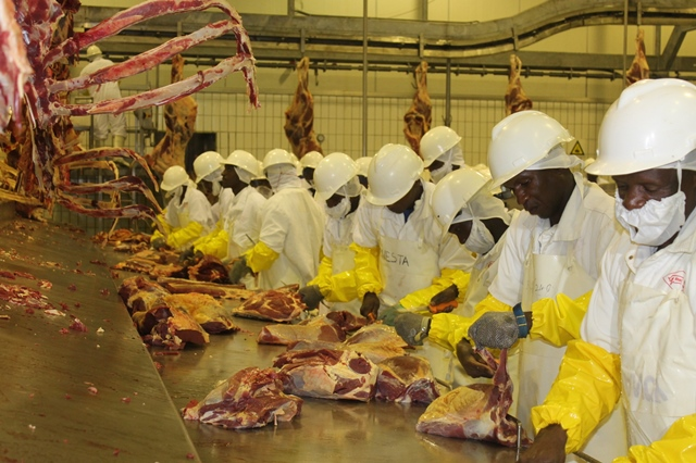 Employees of Botswana Meat Commission (BMC) process meat at the Francistown abattoir (slaughterhouse), about 430 kilometers northeast of Gaborone, capital of Botswana,March 10, 2015. Ghana's President John Dramani who is in Botswana for a three-day official visit toured the slaughterhouse on Tuesday, and promised to persuade the West African nations to import beef from Botswana. (Xinhua/Shingirai Madondo)