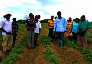MoFA establishes demonstration centres to educate farmers