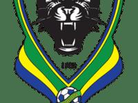 Gabonese Football Federation Logo