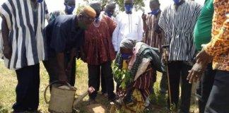 Nanton District Begins Mass Tree Planting Exercise