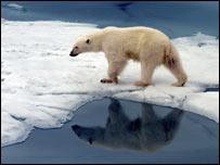 Qué cambio climático, Estafa climatica