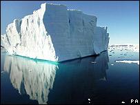 Al derretirse, los icebergs liberan minerales, que absorbe el fitoplancton, lo que come el kril.