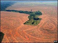 La iniciativa busca mayor cooperación con los ind�genas en la protección ambiental.
