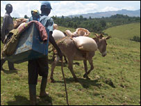 Ndorobo clan members with their livestock