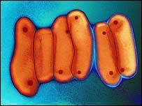 La bacteria de la tuberculosis se transmite a través del aire.