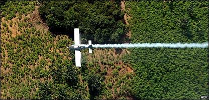 Fumigación de un cultivo de coca en El Catatumbo, Norte de Santander, Colombia, AP