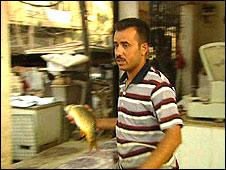 Ali Hameed
