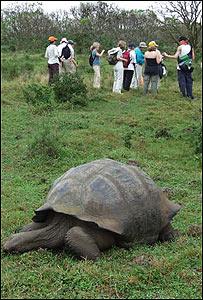 Turistas en las Islas Galápagos