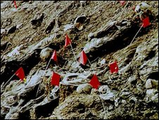 Mass grave near Srebrenica