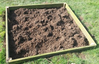 Bare raised bed in a sparse lawn