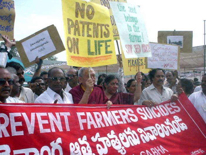 Indian agriculture needs to improve productivity but govts only tinker with minimum prices