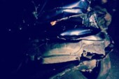 देहरादून में कार अनियंत्रित होकर पलटी, दो लोगों की मौत; दो घायल