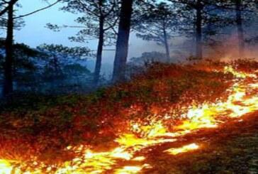 तेजी से धधक रहे उत्तराखंड के जंगल, गांवों तक पहुंचने लगी आग