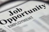 उत्तराखंड में 73 हजार से ज्यादा युवाओं के हाथ में रोजगार