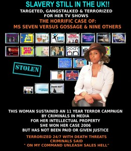 Seven & Her Stolen TV Shows