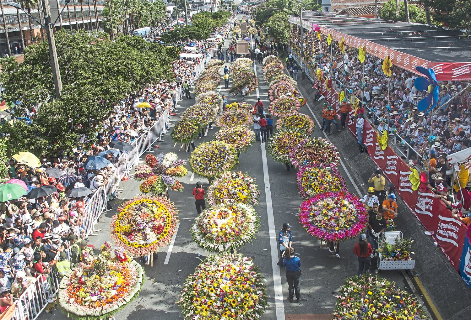 Thousands of people lined the streets Monday, Aug. 7, 2017, to watch the 60th anniversary of the flower festival in Medellin, Colombia. (Nate Guidry/Post-Gazette)