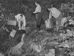 Sept. 9, 1955: Allegheny County police dump out moonshine they found in the thick woods of Richland Township. (The Pittsburgh Press)