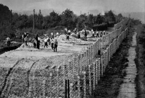 "East Berlin workers prepare a so-called ""death strip"" along the border in 1961. (Associated Press)"