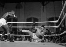 One fighter hits the mat during a Dapper Dan Golden Gloves tournament in Pittsburgh on Feb. 12, 1962. (Morris Berman/Post-Gazette)