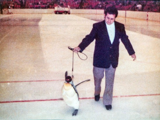 Pete the mascot on the Civic Arena ice. His escort is keeper Pete Shepis. (Photo courtesy Pittsburgh Zoo & PPG Aquarium)