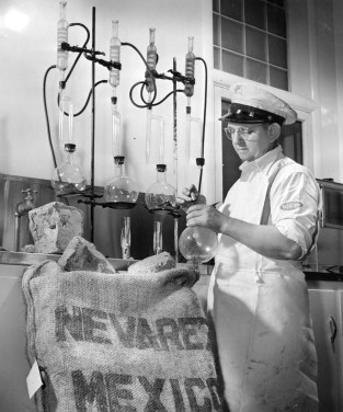 William Gross, a flavor blender, tests moisture content of raw chicle. Chicle, the gum of the sapodilla tree, served as the basis of chewing gum at the time. Picture taken March 21, 1948. (Pittsburgh Press)