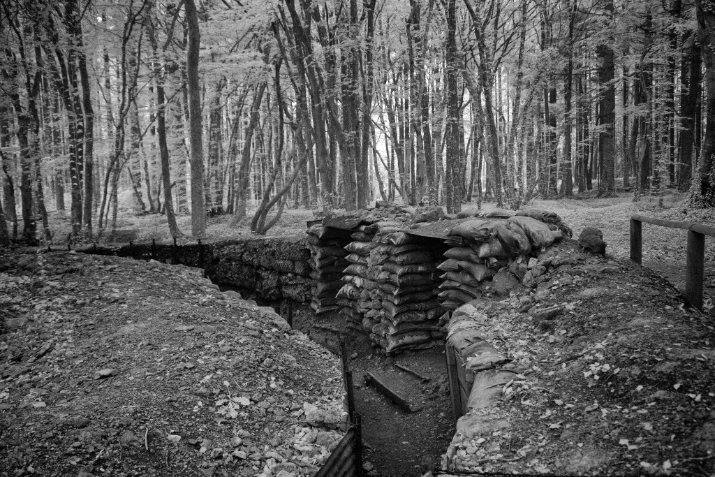Woods and trenches in the Bois Brulee, May 26, 2018.