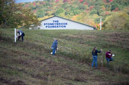 Volunteers paint fence posts at the Stoneybrook Foundation Therapeutic Riding Center as part of the United Way of Southwestern Pennsylvania's first-ever regional Week of Caring, Monday, Oct. 5, 2020, in Acme. The volunteer event was one of 75 activities– including virtual projects– throughout Allegheny, Butler, Westmoreland, Fayette and Armstrong counties organized to help neighbors in need and assist nonprofit agencies. (Pam Panchak/Post-Gazette)