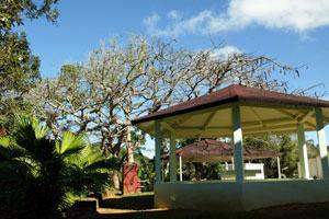 The Puerto Rico Job Corps Centers in Barranquitas.