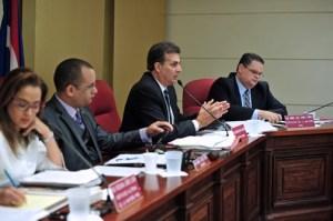 Senate President Eduardo Bhatia speaks during Tuesday's public hearings.