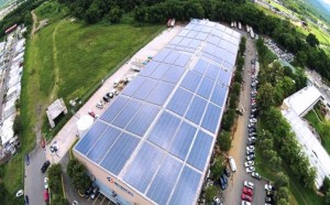 In October 2014, DSS installed an 892-kilowatt photovoltaic system on the rooftop of Droguería Betances Inc., a distribution warehouse in Caguas.