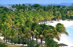 Coconut palms sway in the breeze at Jumby Bay, Antigua — one of five Eastern Caribbean nations that would get a U.S. Embassy for the first time if a bill submitted by Rep. Eliot Engel (D-NY) becomes law. (Credit: Larry Luxner