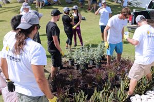 Dozens of volunteers were involved in creating the garden, which consisted of several steps.