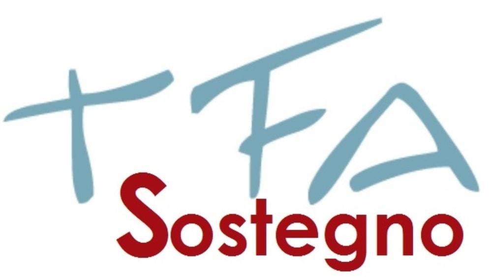 TFA Sostegno VI Ciclo all'Università di Torino: posti, durata, lezioni