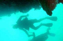2-Tank-Customized-Scuba-Diving-in-Cabo-San-Lucas-Mexico
