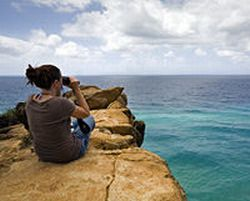 2-day-fraser-island-northern-adventure-from-hervey-bay-in-fraser-island-australia