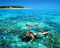 2-day-reef-and-rainforest-package-combo-green-island-cruise-and-in-cairns