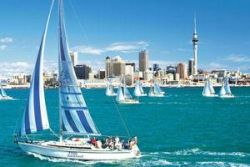 Auckland-great-day-out-tour-in-auckland-new-zealand